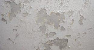 معالجة الجدران